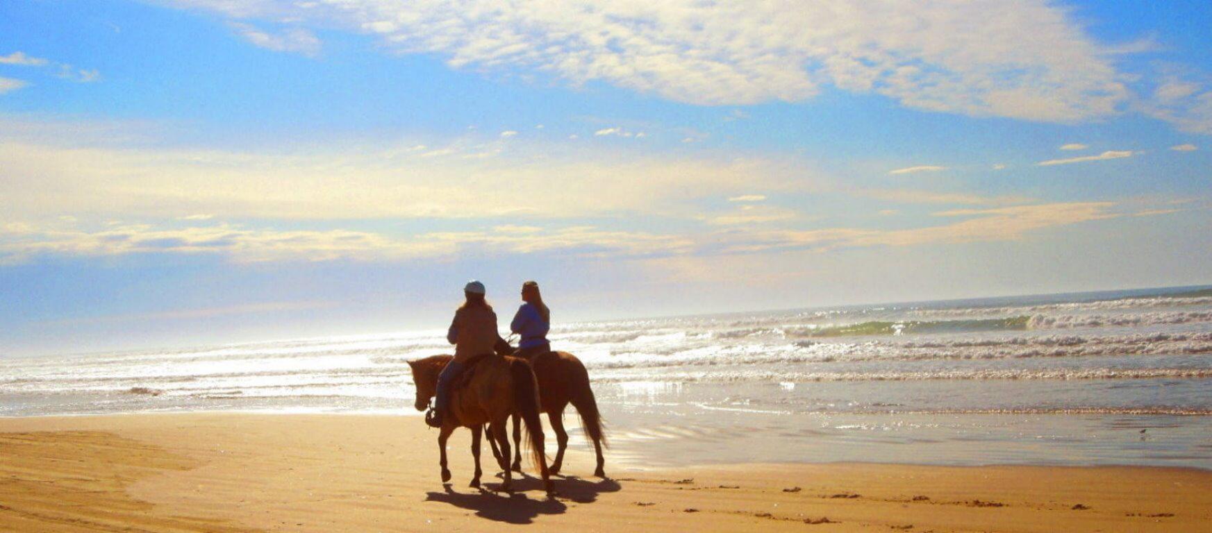 Best-Horseback-Rides-MuirWoods