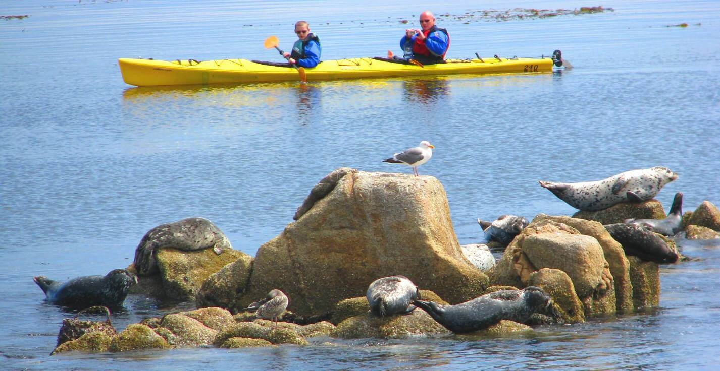 Big-Sur-Outdoor-Activities-Monterey-Things-to-Do-TripAdvisor