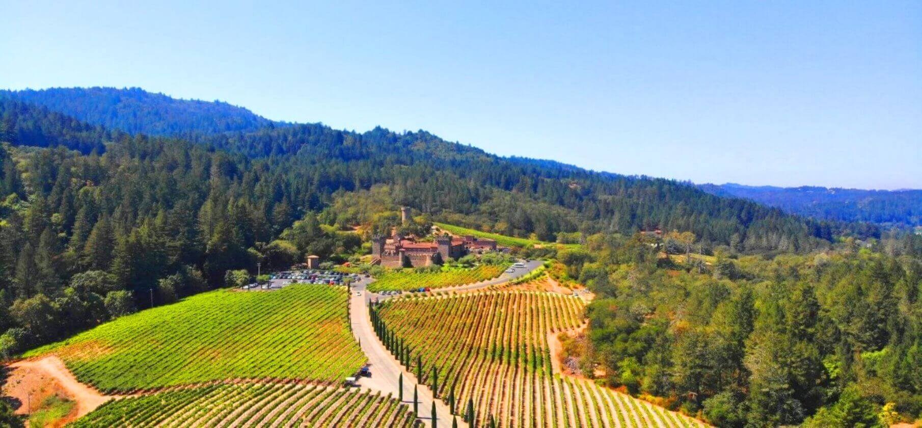 California-Wine-Country-Luxury-Private-Tours
