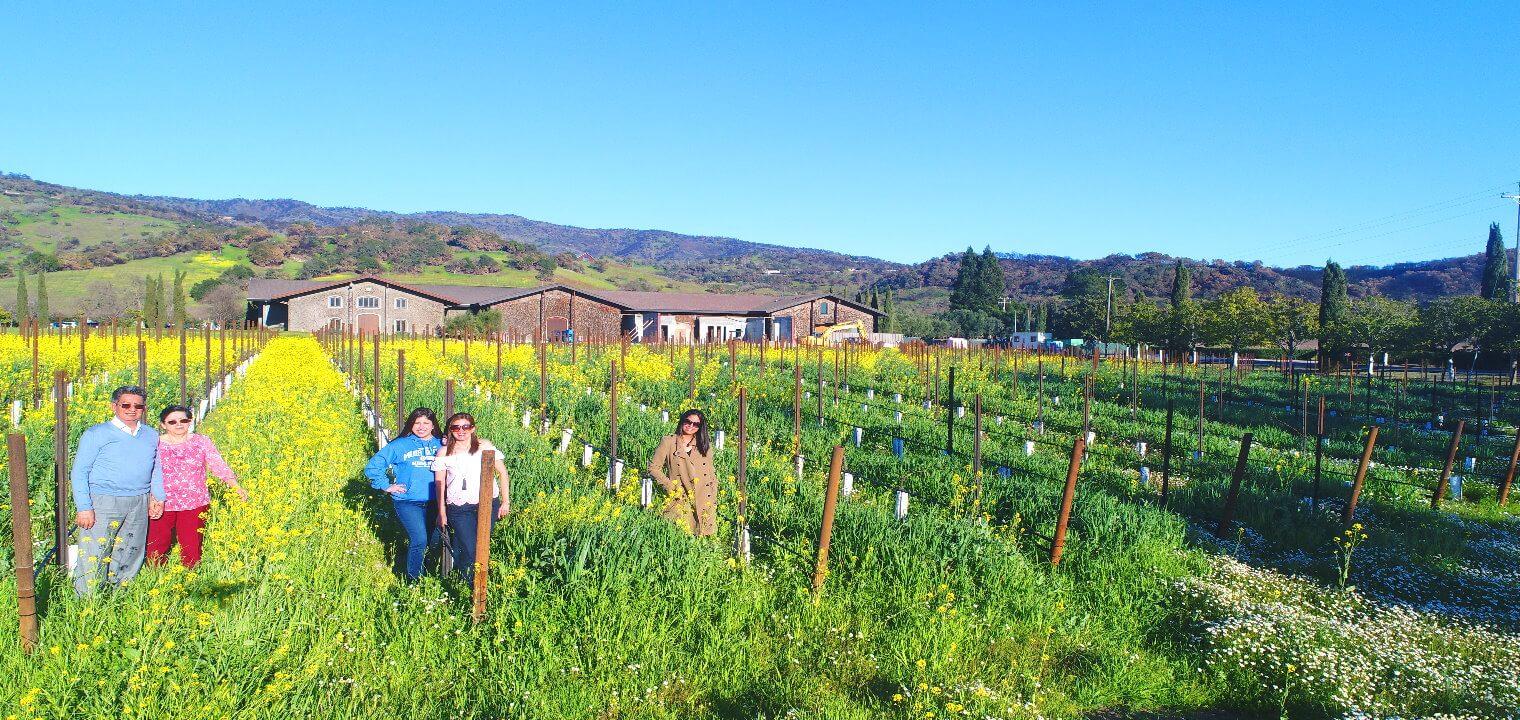 Excursion-a-las-regiones-vinícolas-del-valle-de-Sonoma