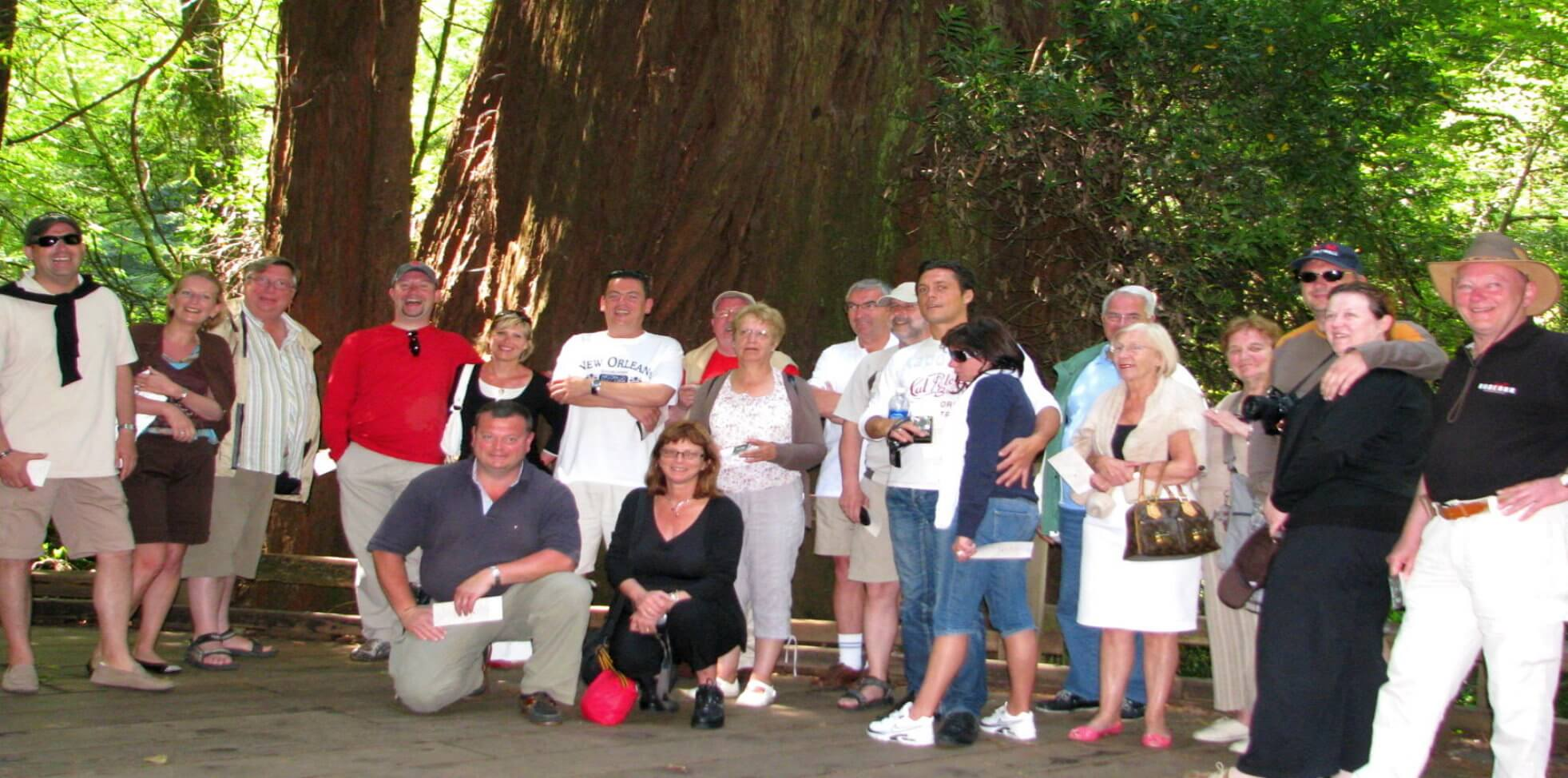 Group-bus-coach-tour-to muir-woods-park-and-wine-country