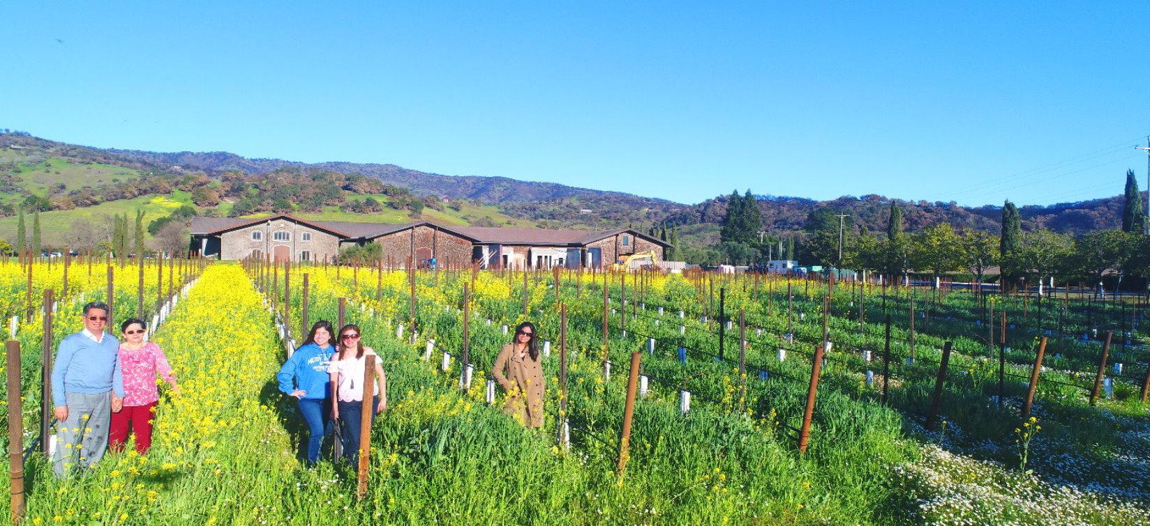 Mendo-Wine-Tours-Taste-Tour-the-Mendocino-Anderson
