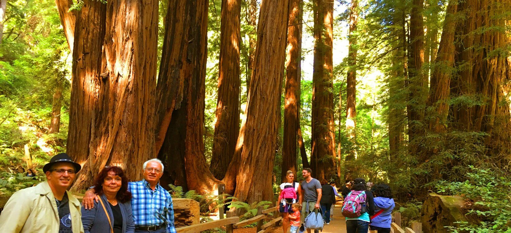 Muir-Woods-National-Monument -visiotrs-guides