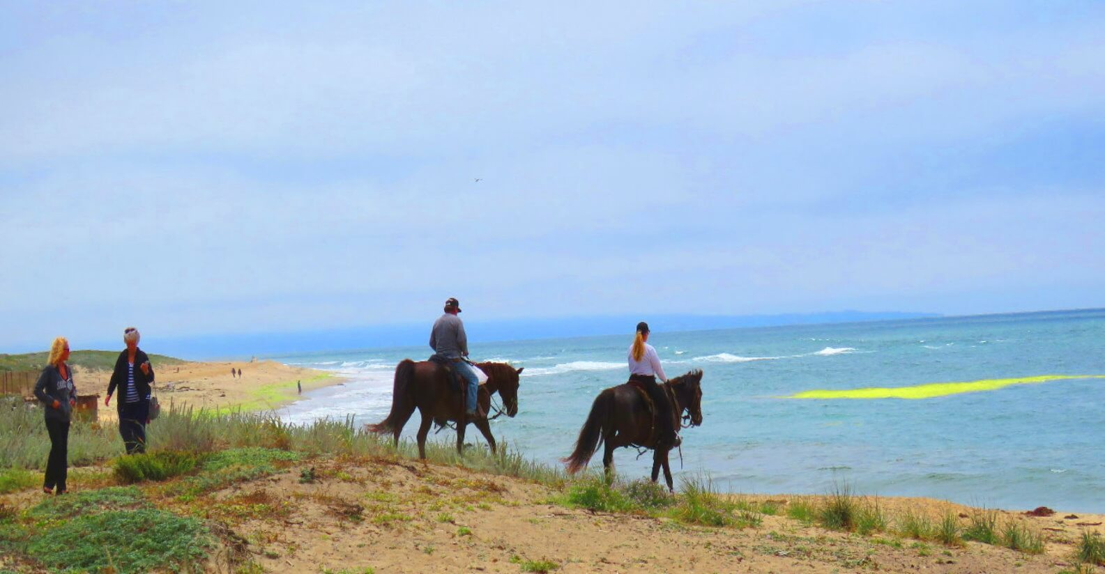 Paseos-a-caballo-por-la-playa-cerca-de-San-_Francisco