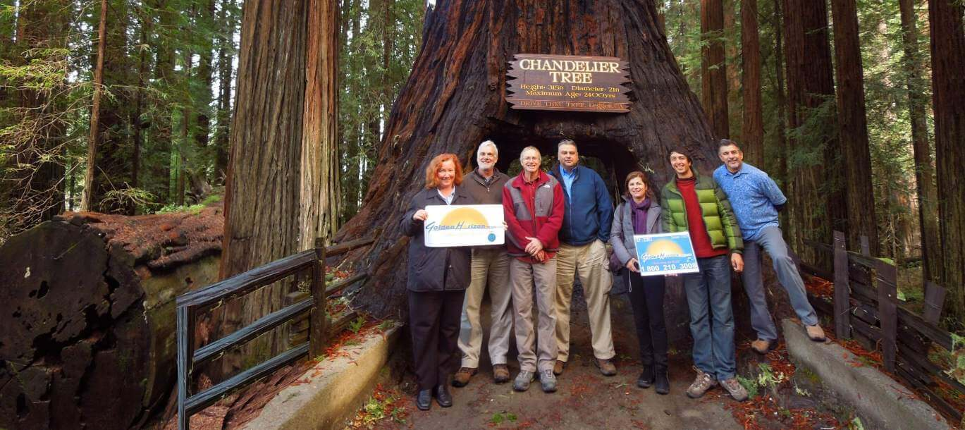Redwood-National-Parks-Tours