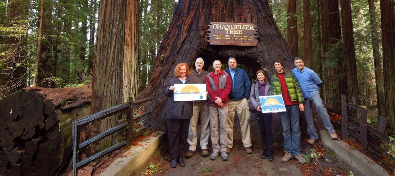 Redwood-National-Parks-Tours