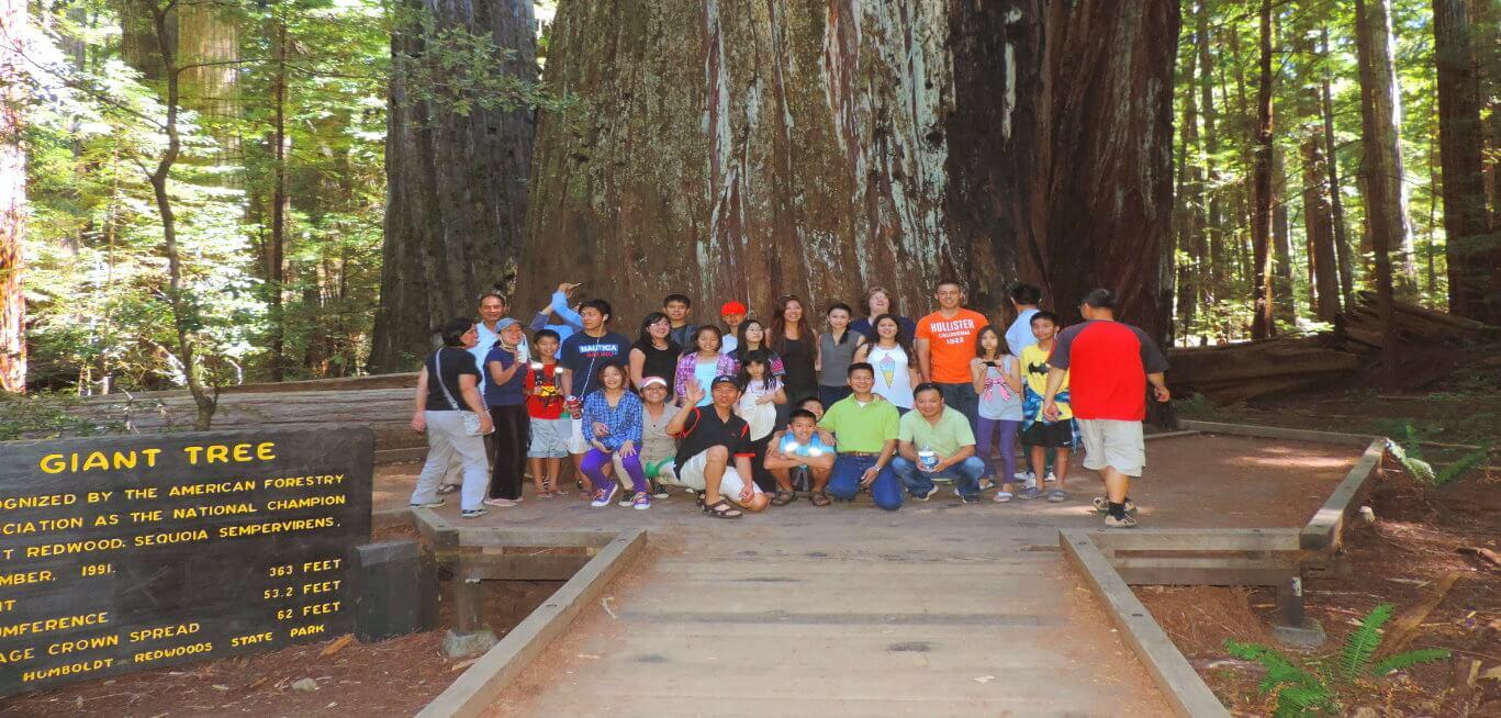 Redwood-National-and-State-Parks-U-S-National-Park-Service