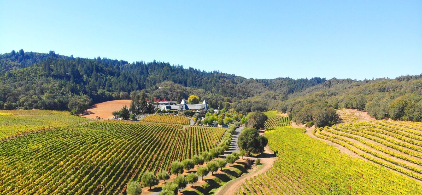 Russian-River-Valley-Dry-Creek-Wine-Trail-Tours
