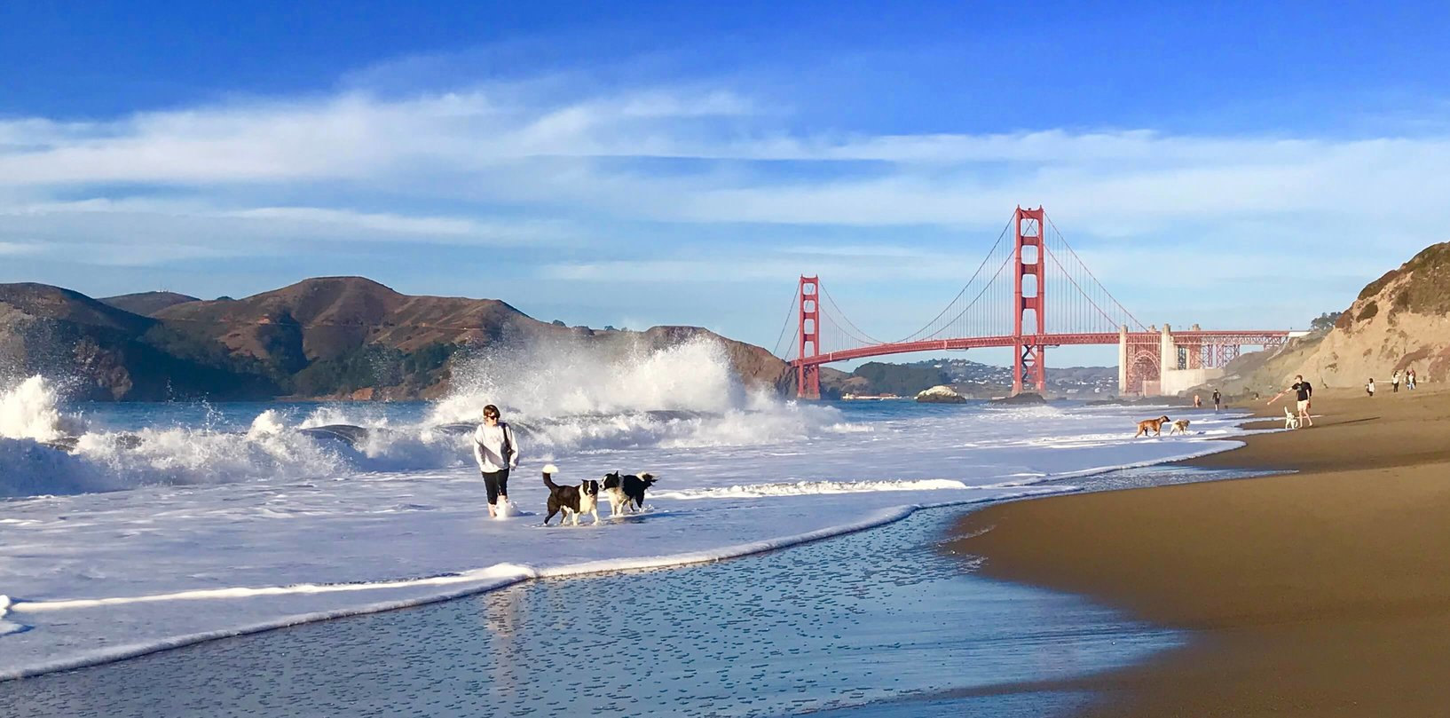 best_san_francisco_full__day_private_tours_and_custom__excursions