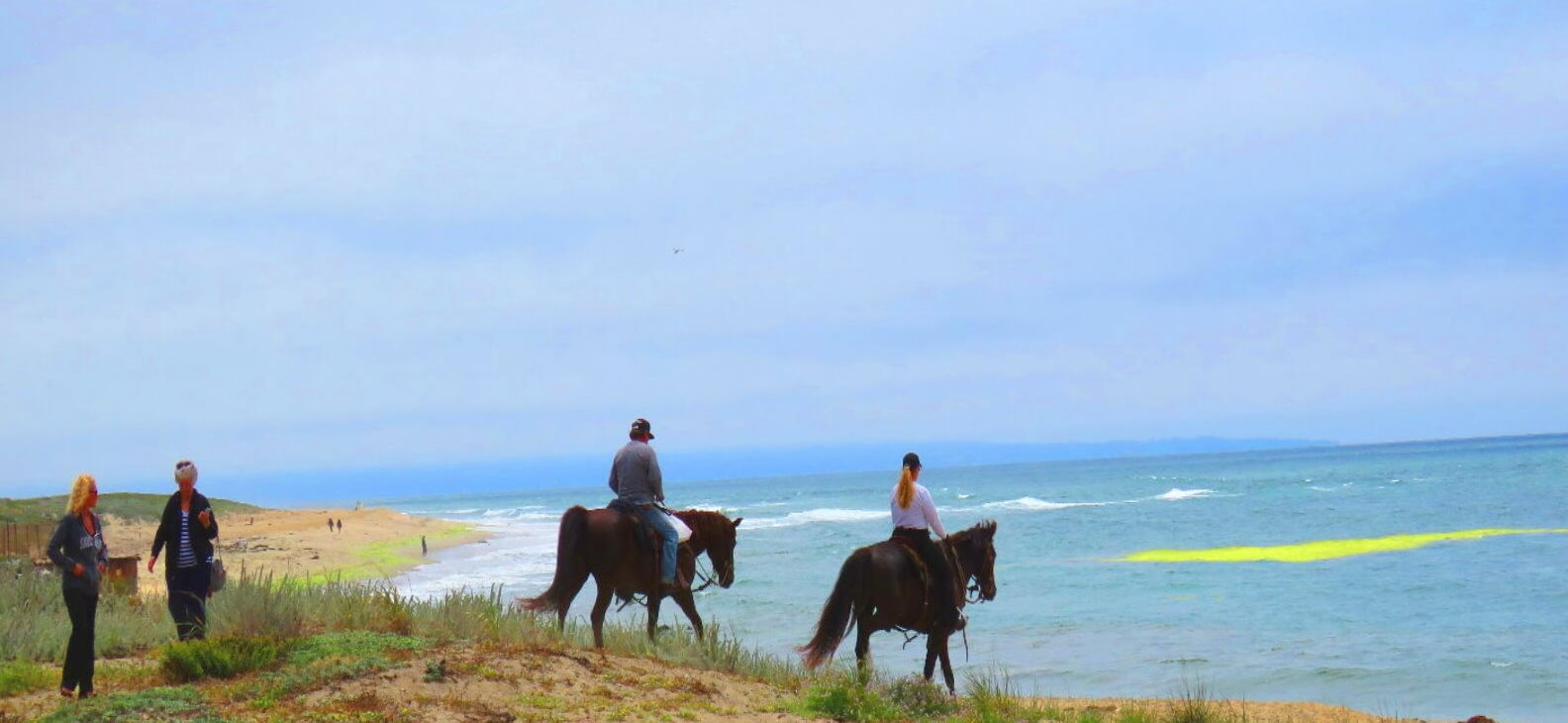excursions-a-caballo-por-la-playa
