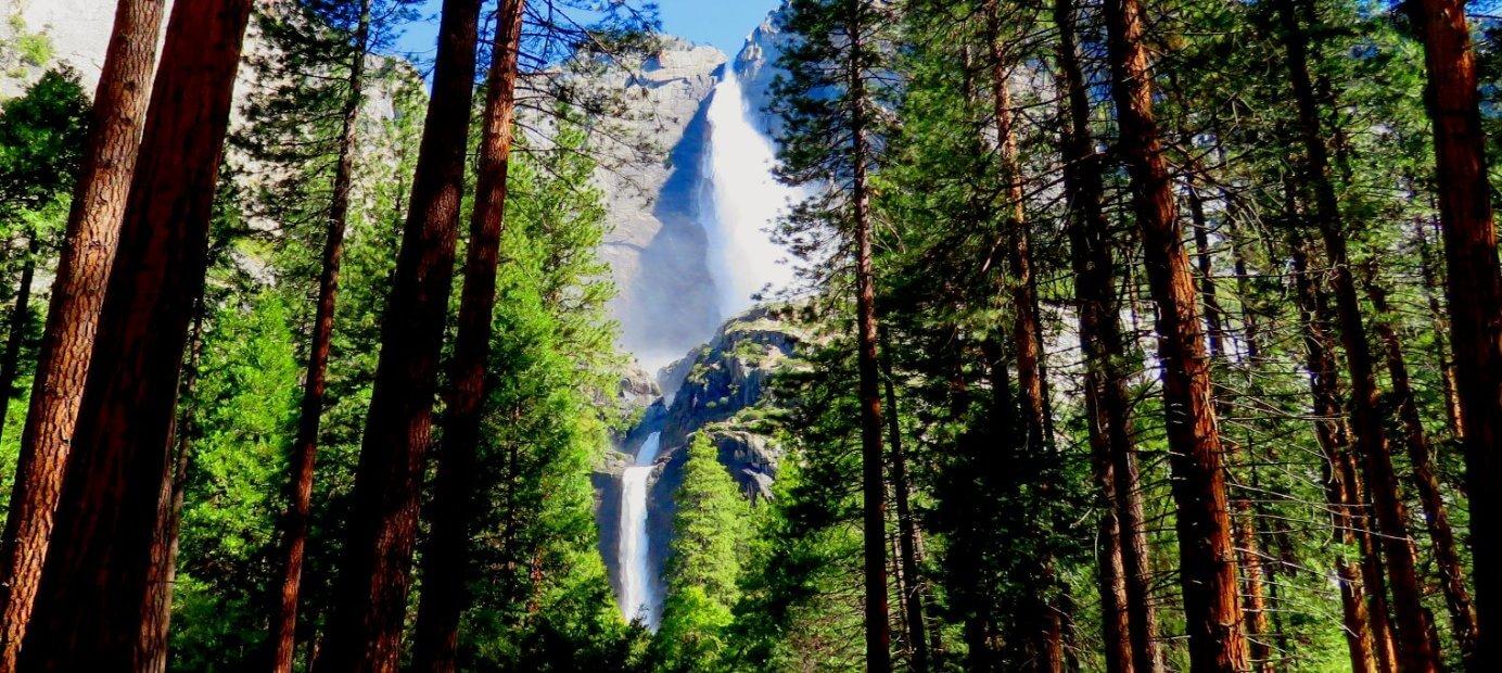 excursions__au_parc_national_de_yosemite_de_san_francisco