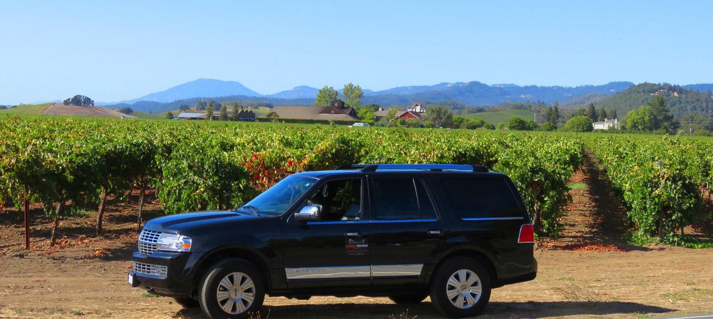 private-wine-tours-mendo-wine-country