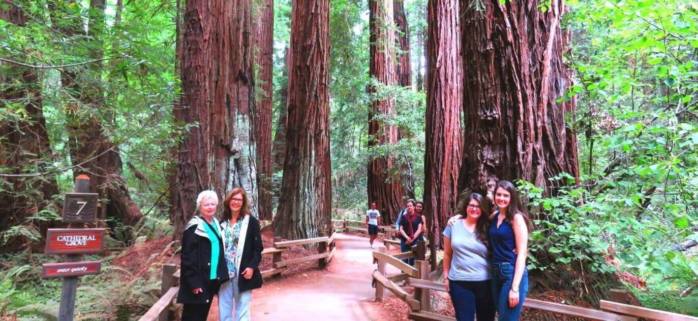 visit-muir-woods-national-monument-u-s-national-park-service