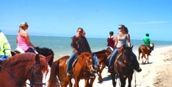 /storage/images/homepage/san-francisco-alcatraz/Horseback-rides-on-the-beach-montar-a-cheval-caballo-en-la-playa.jpg