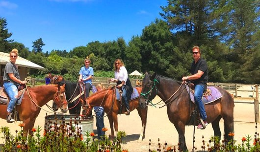 best_equestrian_tours_near_san_francisco_bay_area_tours_.jpg